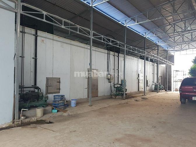 Chính chủ cần bán nhà xưởng mặt tiền 3/2 TT Mỹ Thọ Đồng Tháp