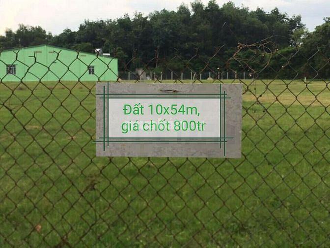 Đất gò dầu, tây ninh. 10x54m, giá chốt: 800tr