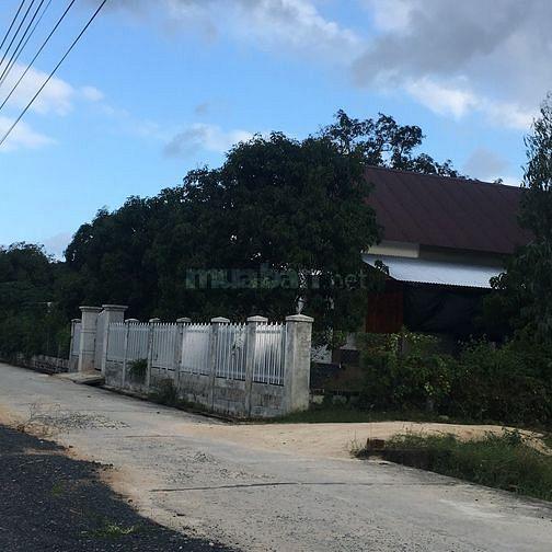 Chính chủ cần bán gấp lô đất 9x22m ngay sát đường Đinh Tiên Hoàng