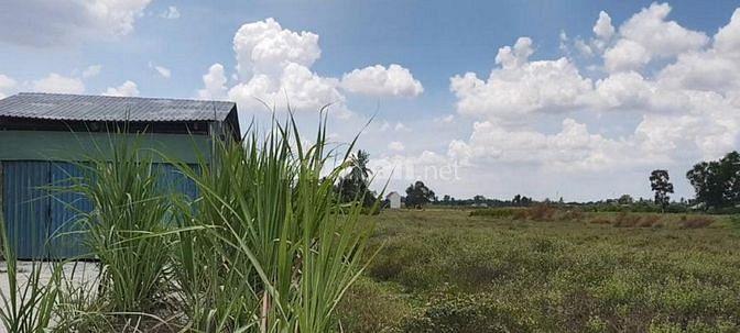 Bán gấp 1000m2 đất thổ vườn tại huyện Bến Lức, Tỉnh Long An