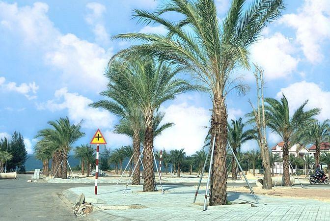 Chính chủ bán nhanh đất Biển Nhân Trạch - Giá đầu tư