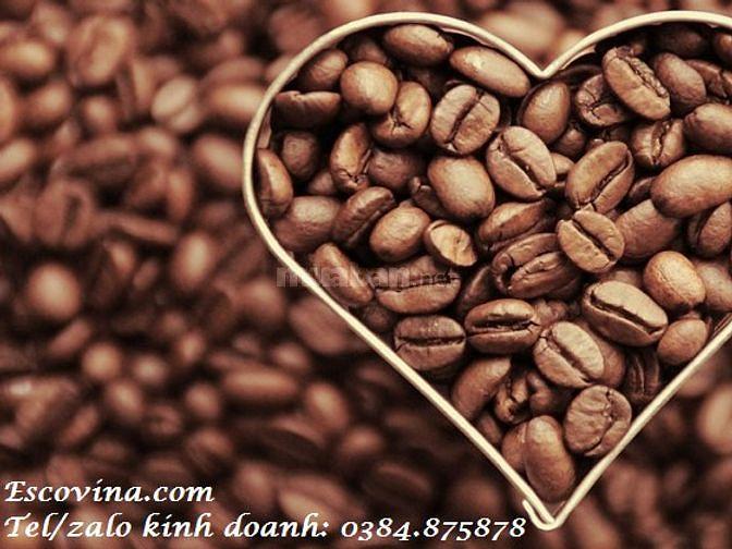 Cung cấp cà phê rang xay giá sỉ, tìm đối tác thương mại tại Bến Tre