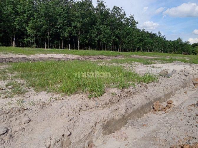 Chính chủ cần bán đất ngay trung tâm hành chính Chơn Thành.