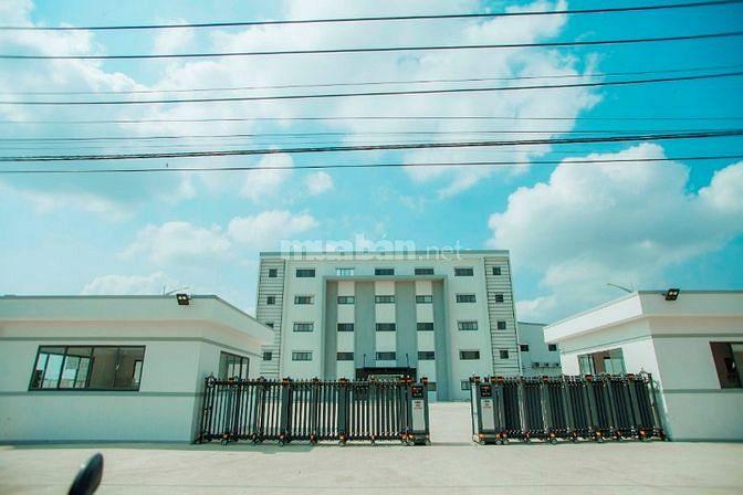Đất xây xưởng 42.5x162m giá 100tỷ đường xe cont trong Làng Sen Đức Hòa
