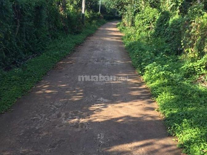 Bán đất Bảo Quang 1 lô duy nhất DT 125m2 giá 270tr