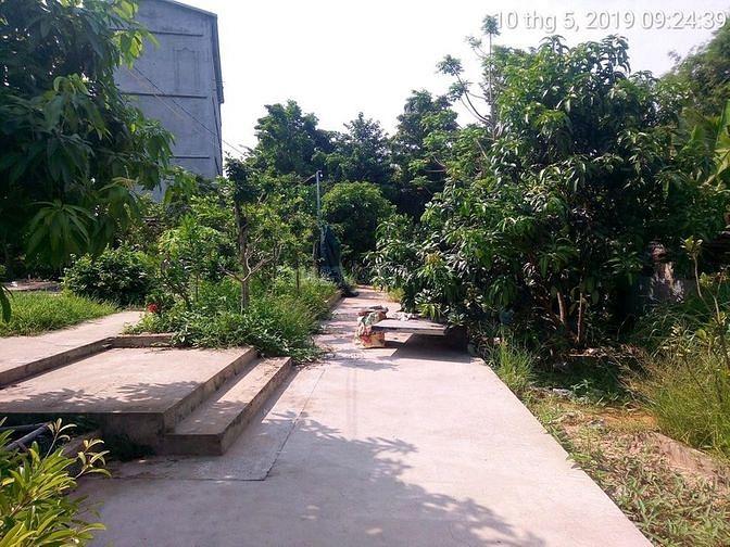 Bán nhà biệt thự vườn + nhà yến